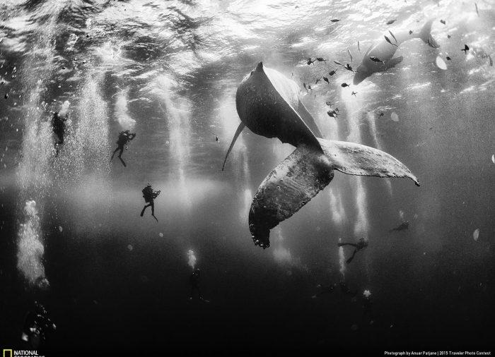 Las mejores fotos de viajes del mundo según National Geographic