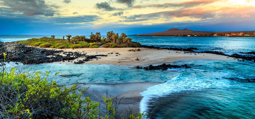 Las mejores islas para disfrutar del invierno más cálido