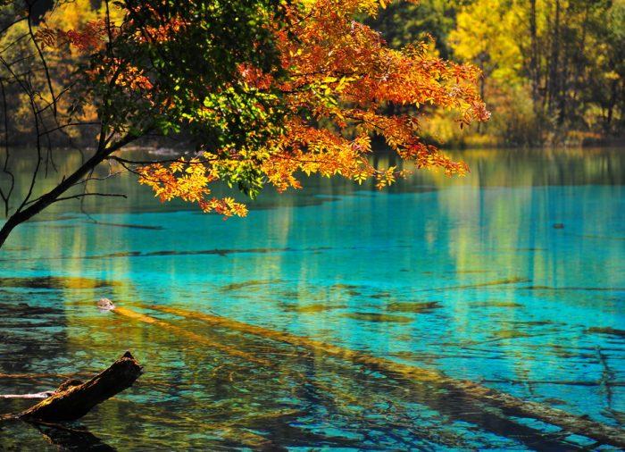 Turismo por los Parques Nacionales de América: Escenarios mágicos llenos de naturaleza