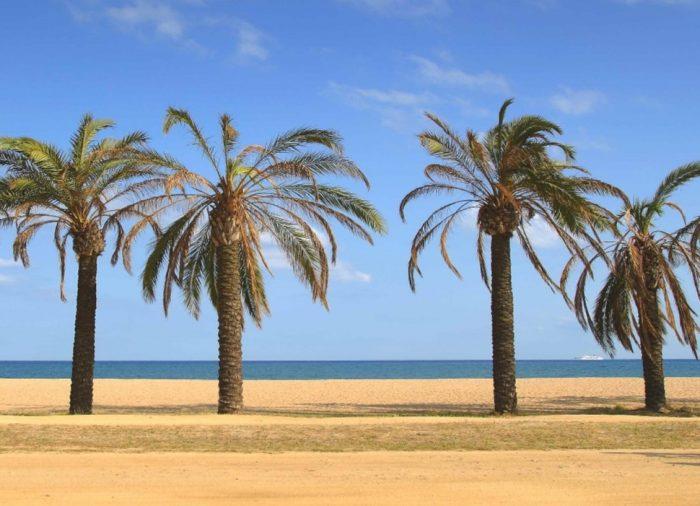 ¿Por qué viajar a Costa Barcelona? 5 razones para decidirte