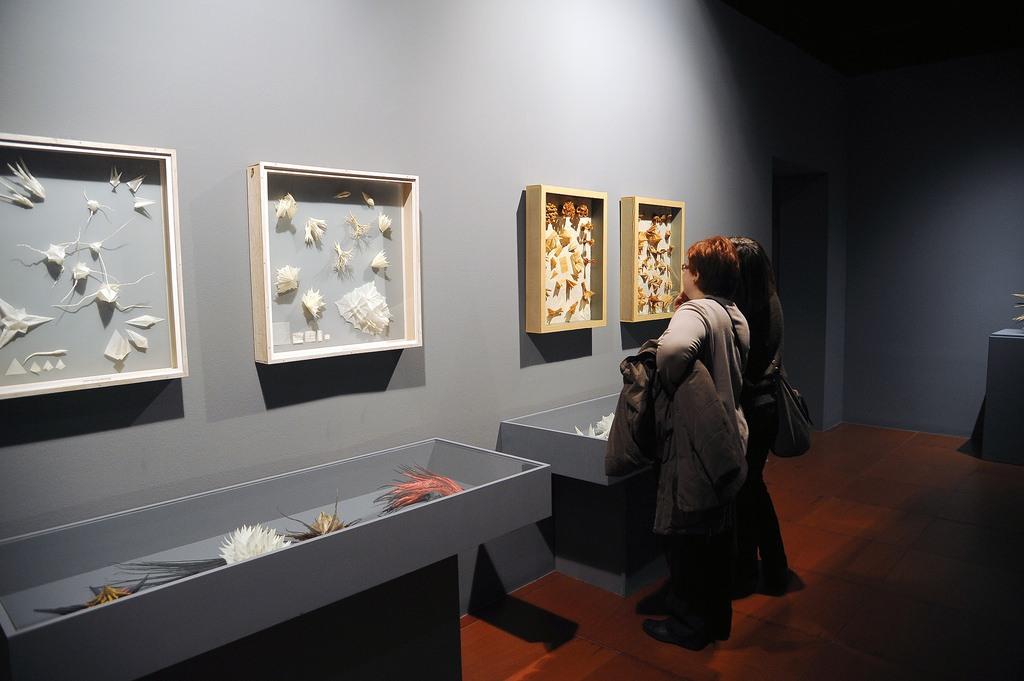 Museo de Origami