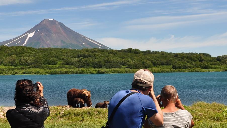 Turistas fotografiando a los Osos Grizzly