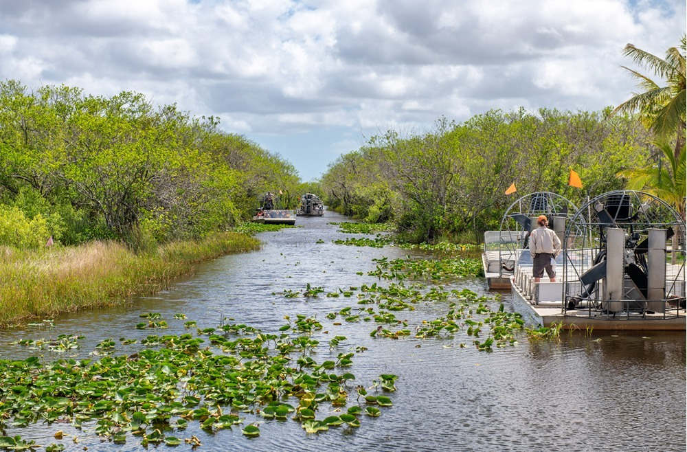 Excursiones en hovercraft por los Everglades