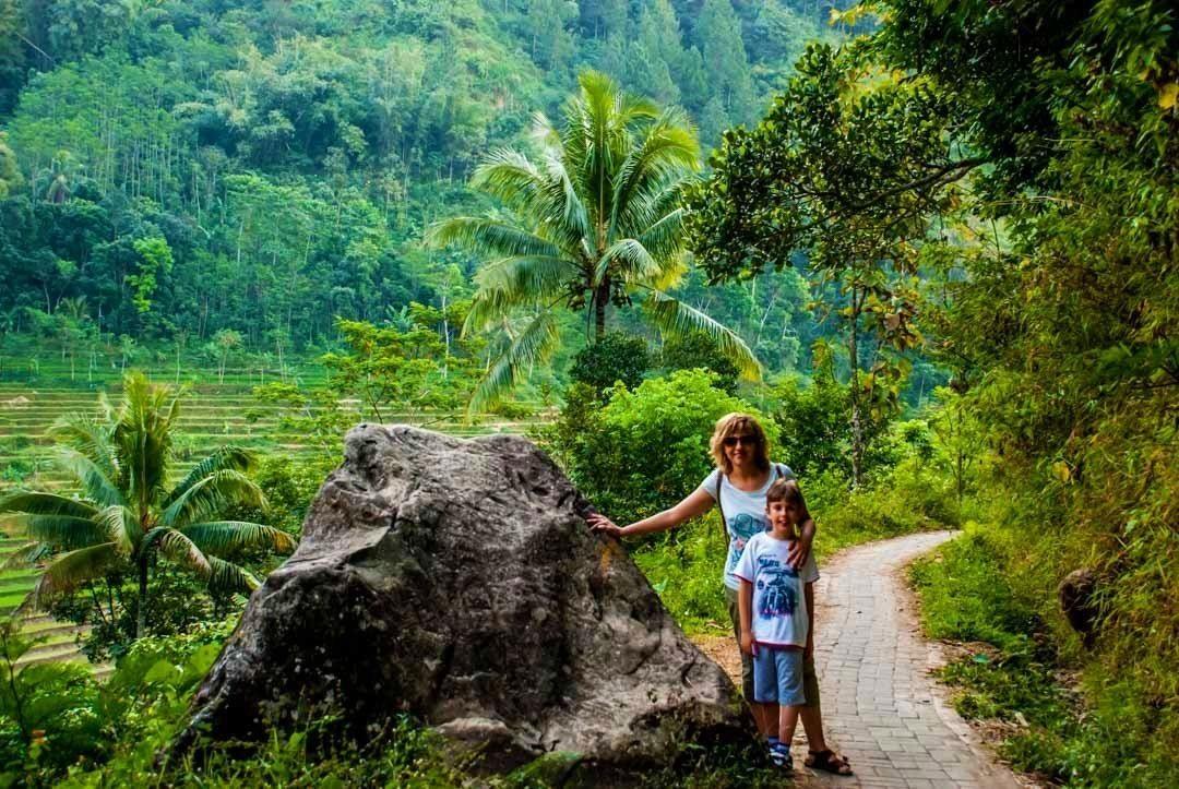 Selva de Java