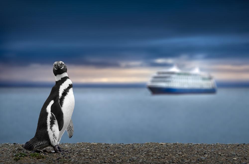 Cabo de Hornos, zona austral de Chile