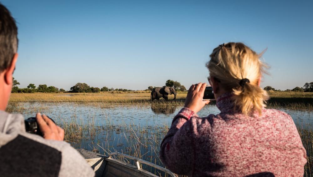 Elefantes por el Delta del Okavango.