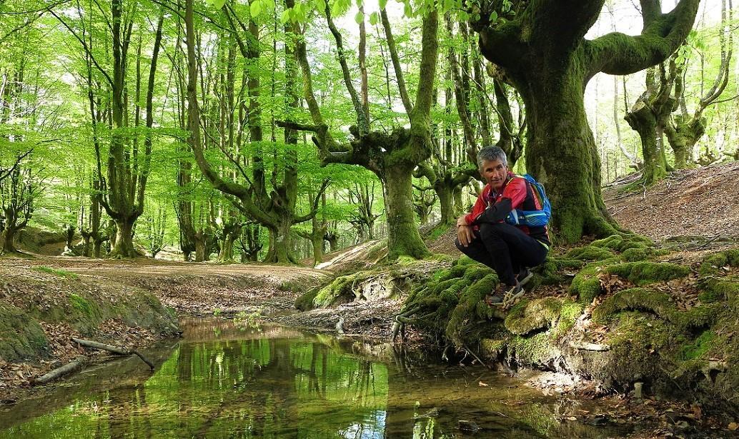 Excursionista en el Parque Natural de Gorbea