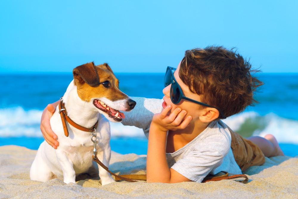 Los mejores hoteles de playa para viajar con tu mascota