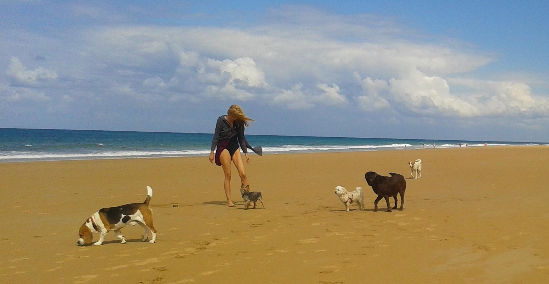Chica paseando mascotas en playa de Santoña