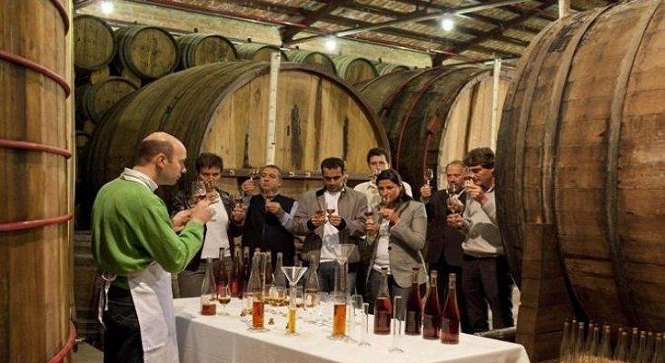Cata de vinos en una bodega de La Rioja