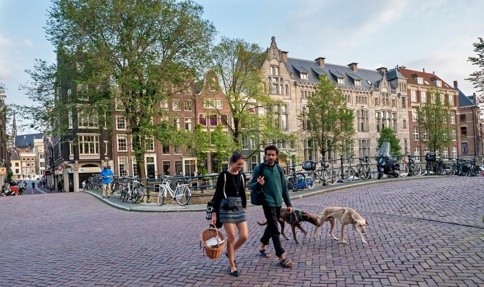 Pareja paseando sus mascotas por Amsterdam