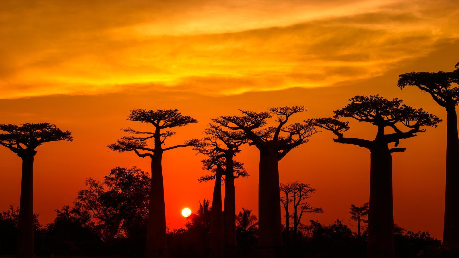 Atardecer en Madagascar