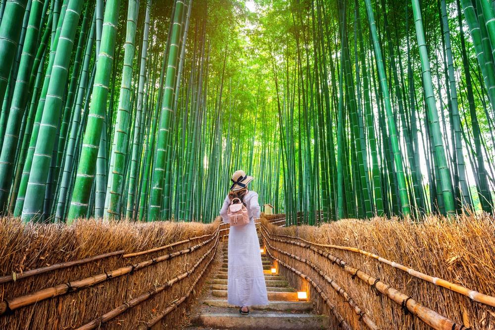 Mujer paseando por el bosque de bambú