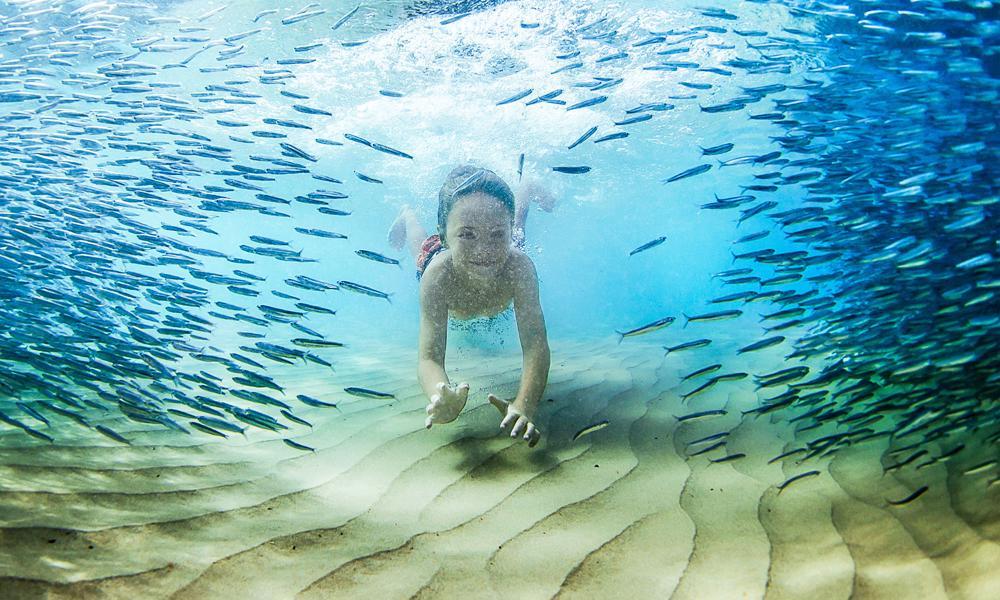 En Ocean Cay se puede disfrutar de varias actividades en familia